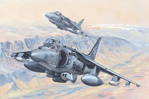 "AV-8B Harrier II Marines ""Ace of Spades 01"" oder ""Avengers 05"" Bausatz, 1/18"